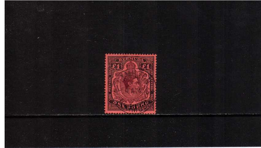 �Purple and Black on Red showing the illustrated variety