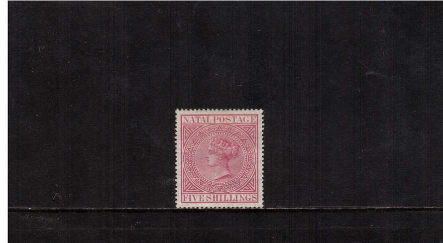 5/- Rose. A superb lightly mounted mint stamp.<br/><br/>