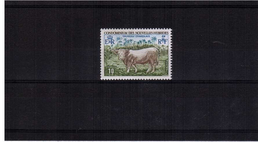 10F Charolais Bull single superb unmounted mint