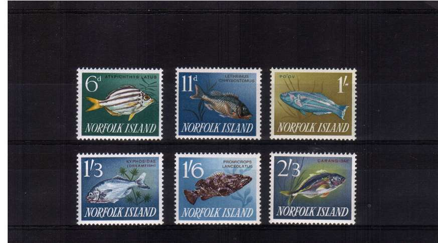 Fish set of six superb unmounted mint