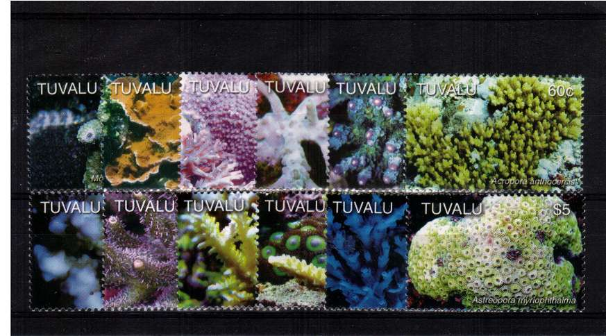 Sea Corals set of twelve superb unmounted mint.<br/><b>ZQC</b>