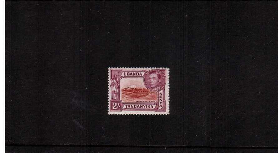2/- Brown & Purple - Perforation 13¾x13¼<br/>A superb unmounted mint single