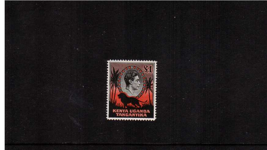 �Black and Red - Perforation 14<br/>