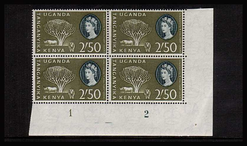 2/50 definitive value in a superb unmounted mint plate block of four