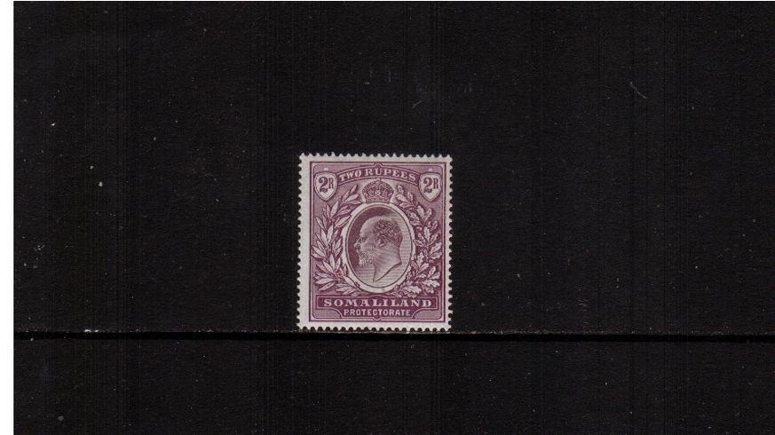 2R Dull and Bright Purple<br/>
