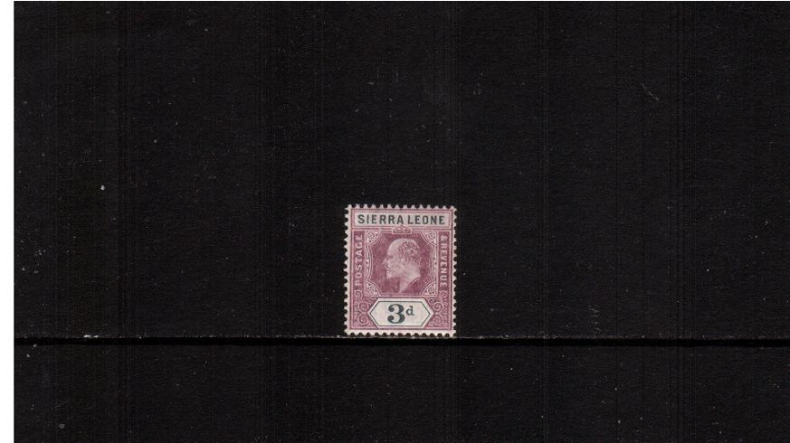 3d Dull Purple and Grey - Watermark Multiple Crown CA<br/>