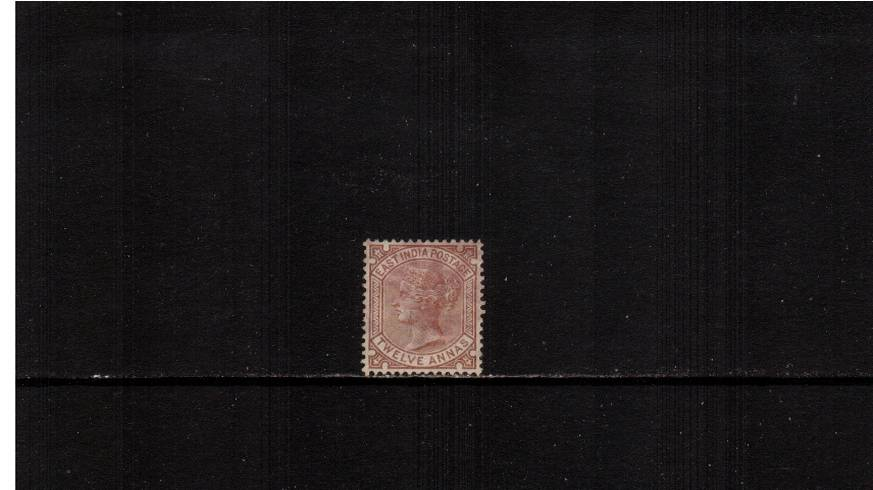 12a Venetian Red<br/>