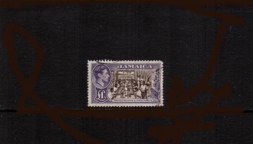 �Chocolate and Violet<br/>