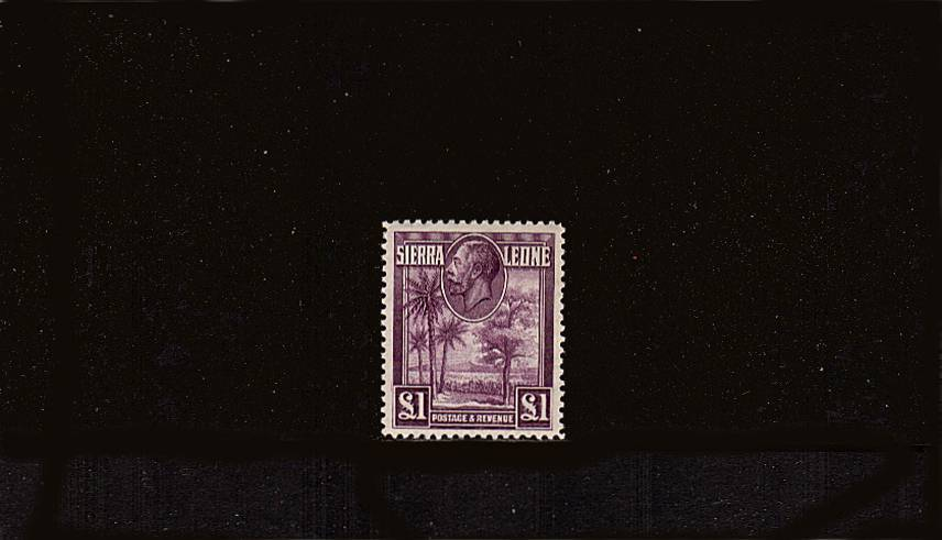 The �Purple<br/>