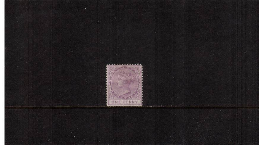 1d Lilac-Mauve - Watermark CC<br/>