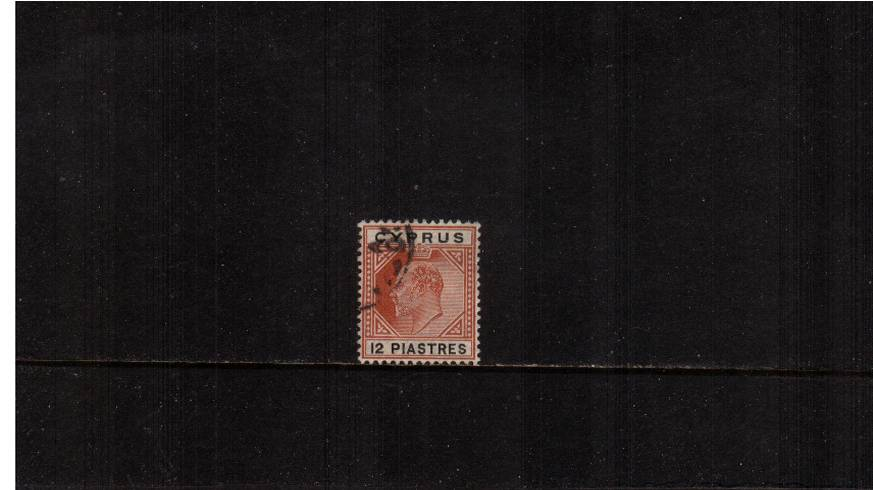 12pi Chestnut and Black - Watermark Multiple Crown CA<br/>
