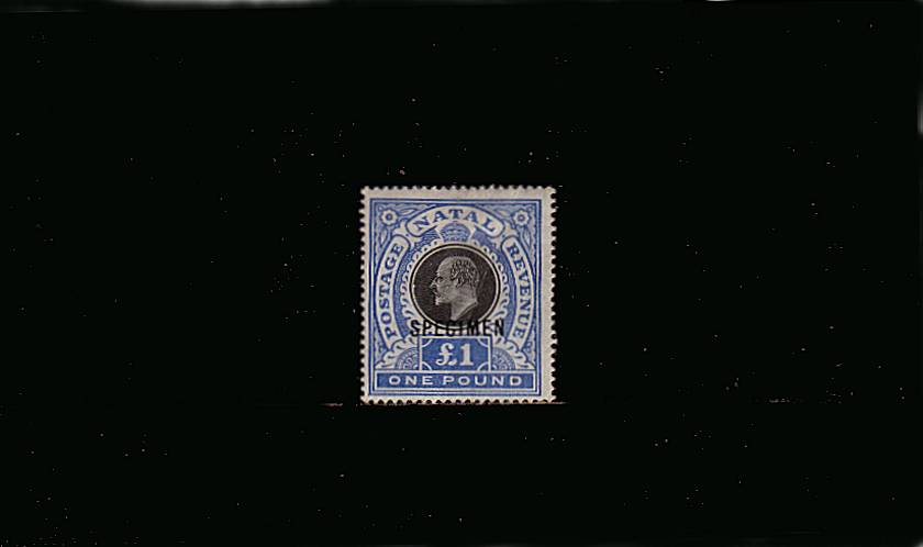 �Black and Bright Blue overprinted ''SPECIMEN''.<br/>