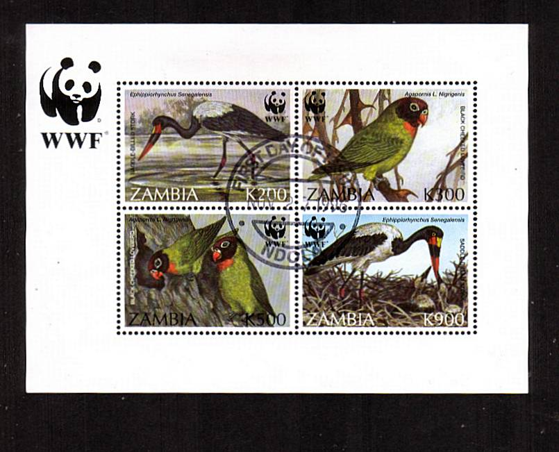 Endangered Species - Birds - WWF<br/>