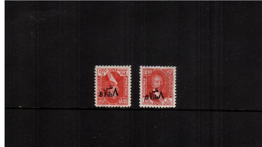 8f on 1絘 Scarlet<br/>