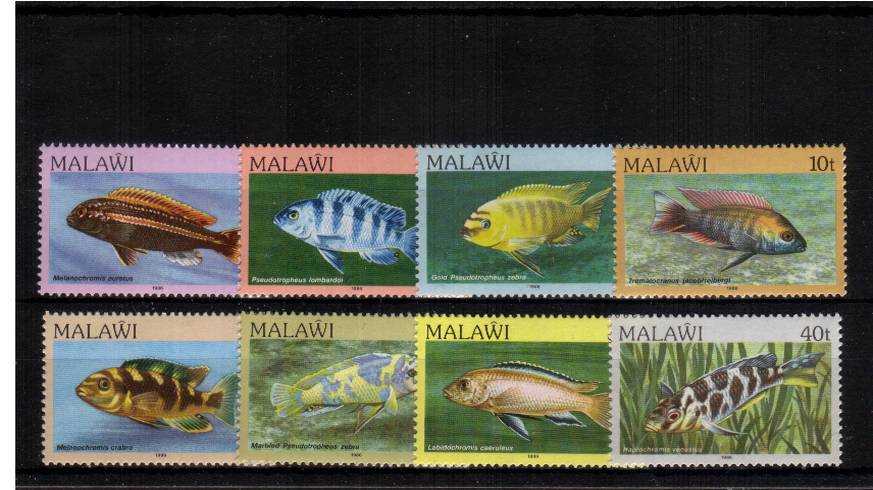 Fishes<br/>