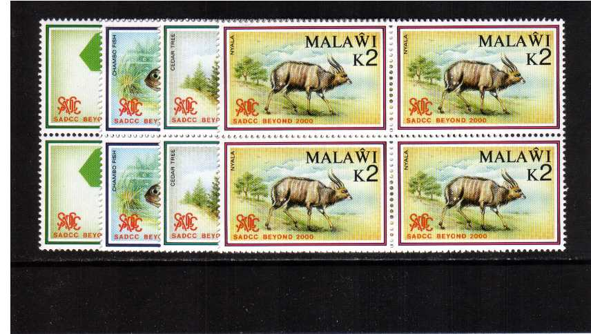 SADCC Beyond 2000 set of four in superb unmounted mint blocks of four.
